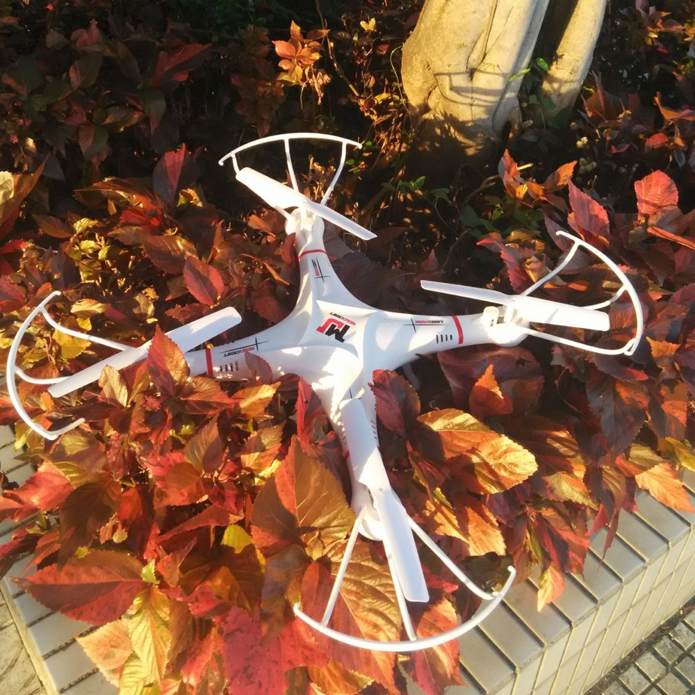 Large Quadcopter landed on leafs
